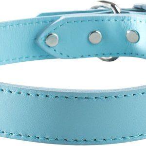OmniPet Signature Leather Pet Collar
